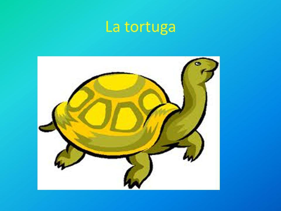 La tortuga