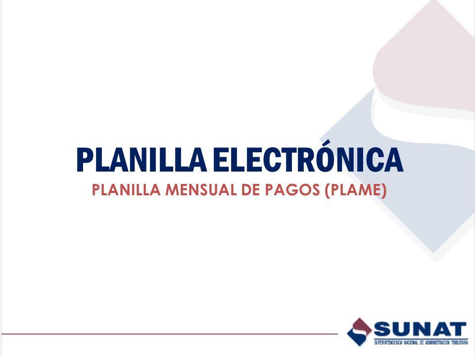 PLANILLA ELECTRÓNICA PLANILLA MENSUAL DE PAGOS (PLAME)