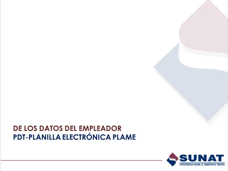 DE LOS DATOS DEL EMPLEADOR