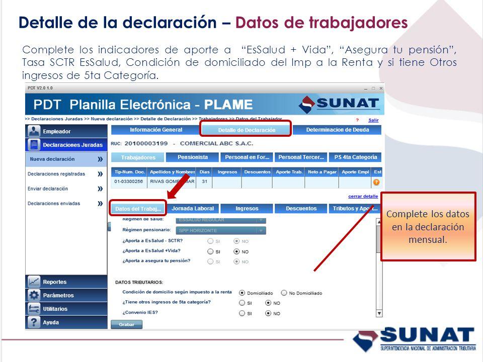 Complete los datos en la declaración mensual.