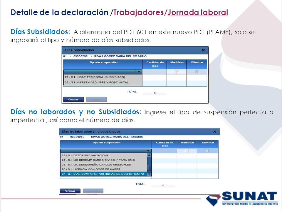 Detalle de la declaración /Trabajadores/Jornada laboral