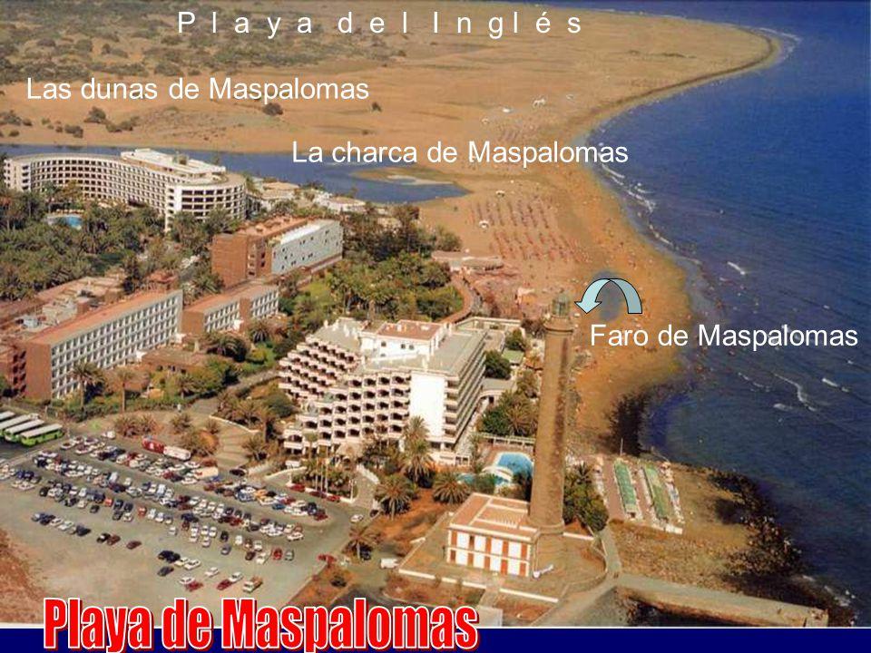 Playa de Maspalomas P l a y a d e l I n g l é s