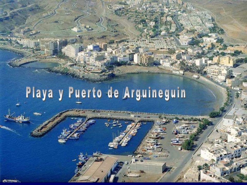 Playa y Puerto de Arguineguin