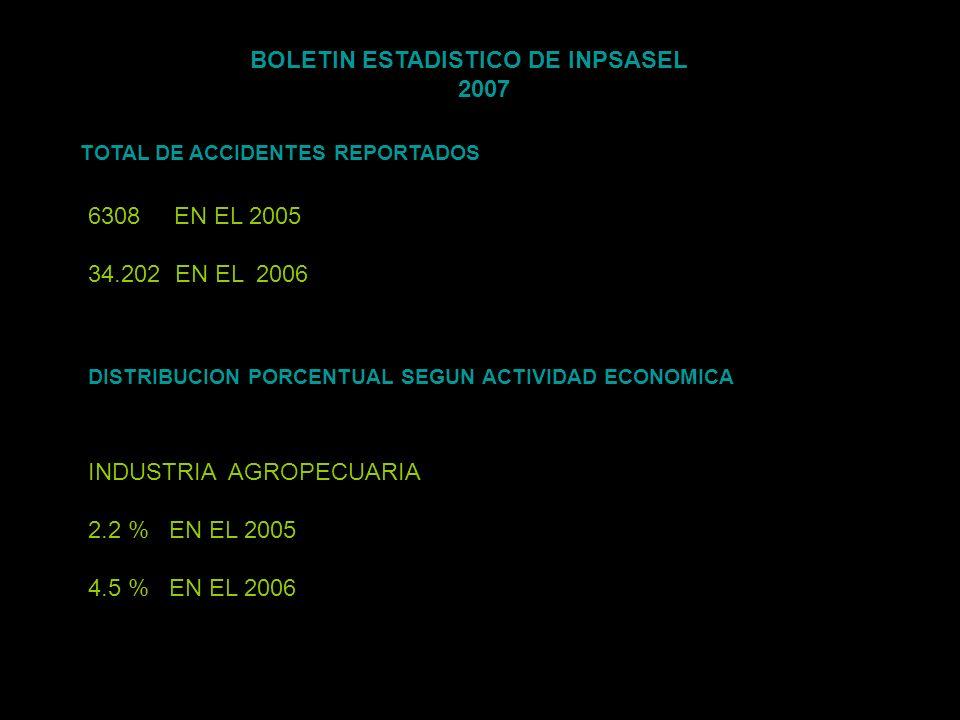 BOLETIN ESTADISTICO DE INPSASEL 2007