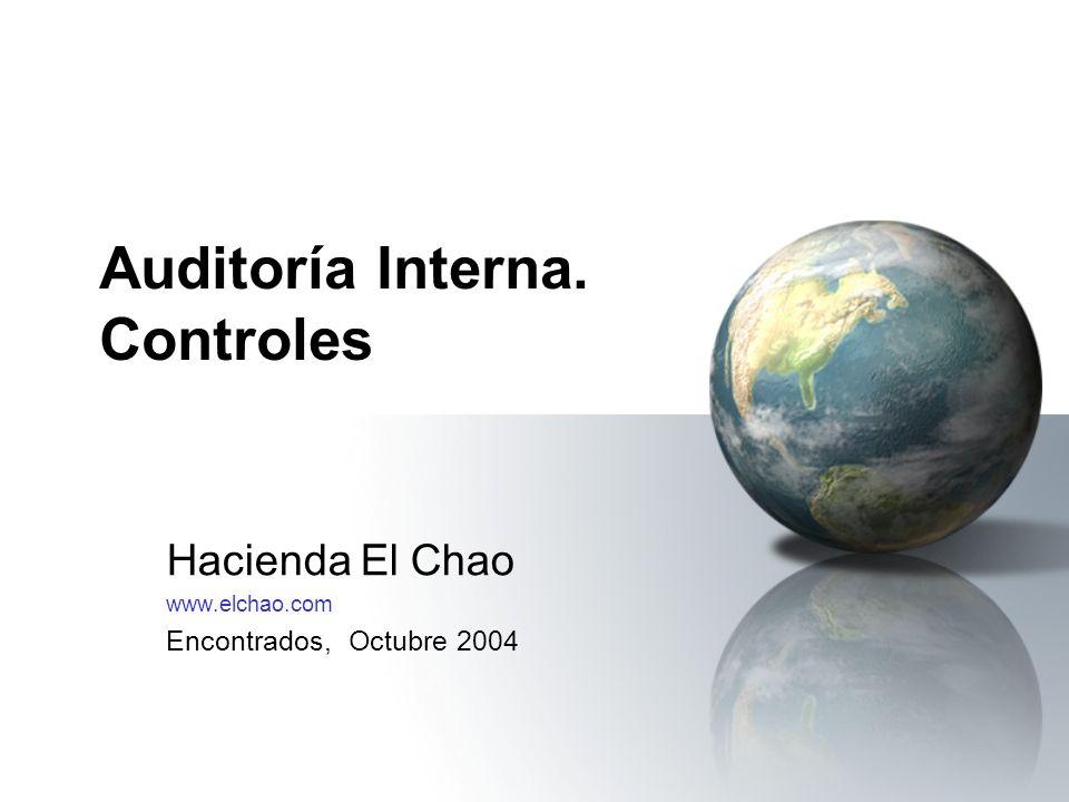 Auditoría Interna. Controles