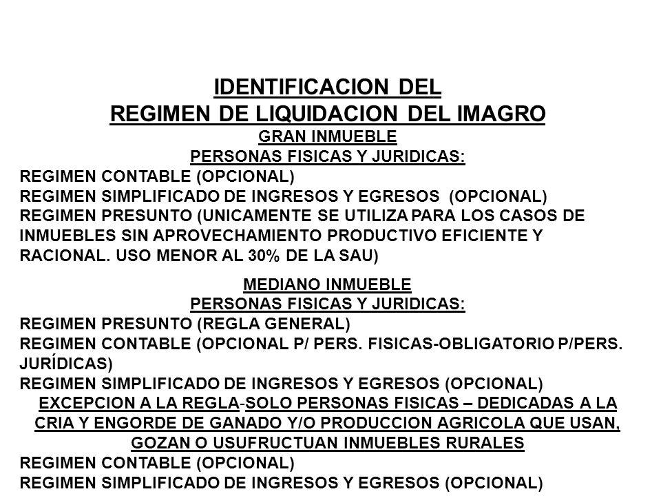 REGIMEN DE LIQUIDACION DEL IMAGRO PERSONAS FISICAS Y JURIDICAS: