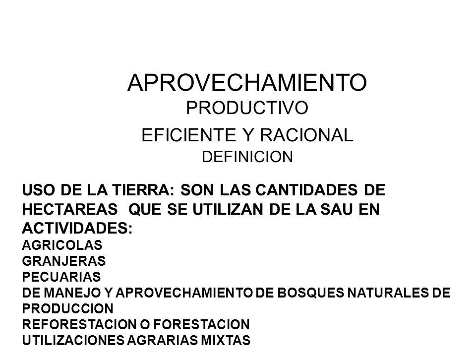 APROVECHAMIENTO PRODUCTIVO EFICIENTE Y RACIONAL DEFINICION
