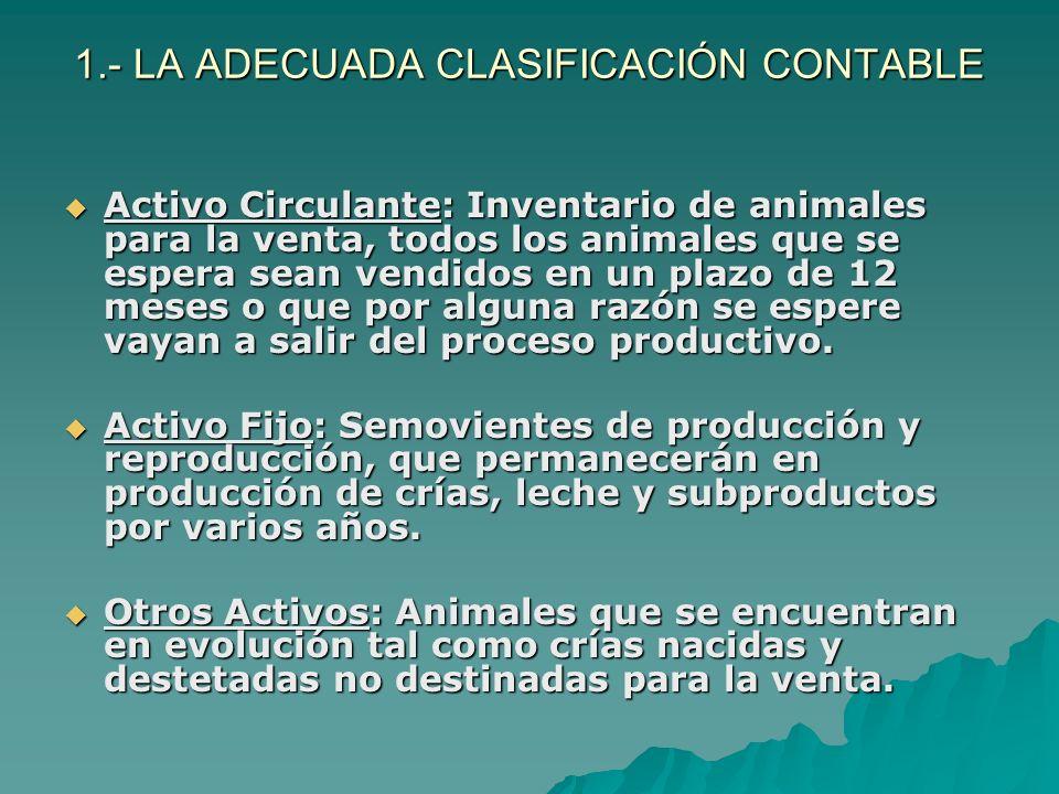 1.- LA ADECUADA CLASIFICACIÓN CONTABLE