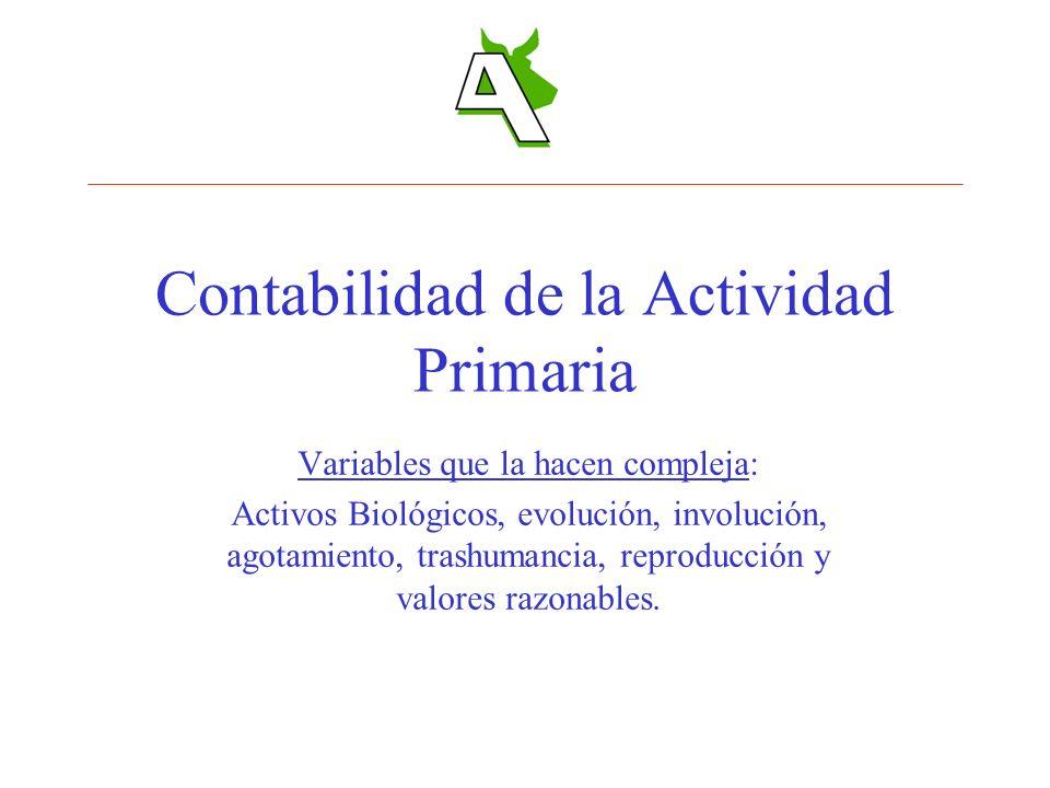 Contabilidad de la Actividad Primaria