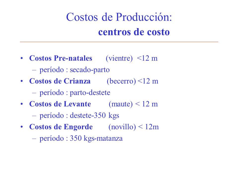 Costos de Producción: centros de costo