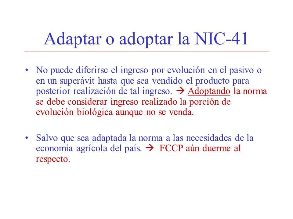 Adaptar o adoptar la NIC-41