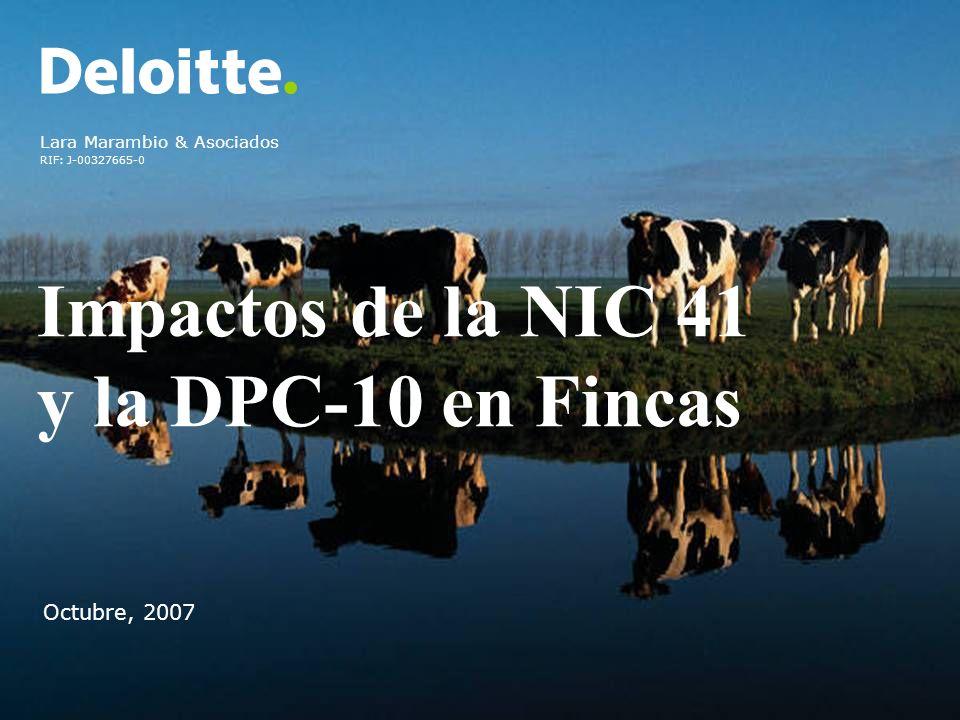 Impactos de la NIC 41 y la DPC-10 en Fincas