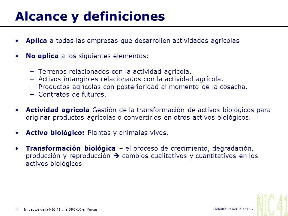 Alcance y definiciones