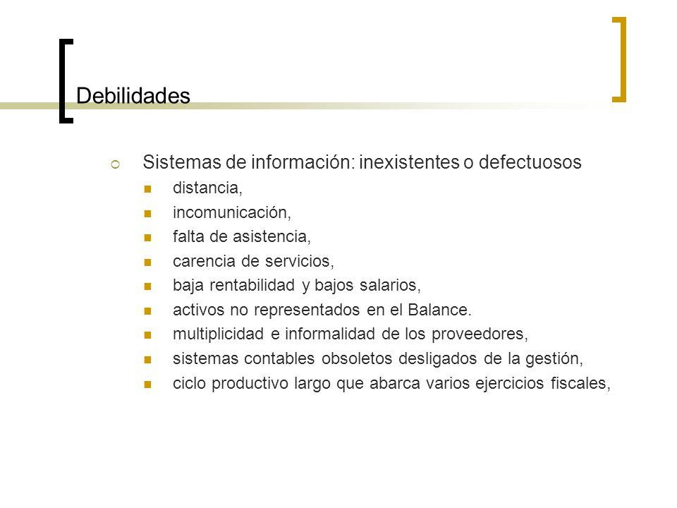 Debilidades Sistemas de información: inexistentes o defectuosos