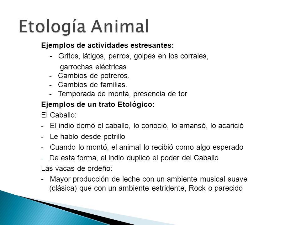 Etología Animal Ejemplos de actividades estresantes: