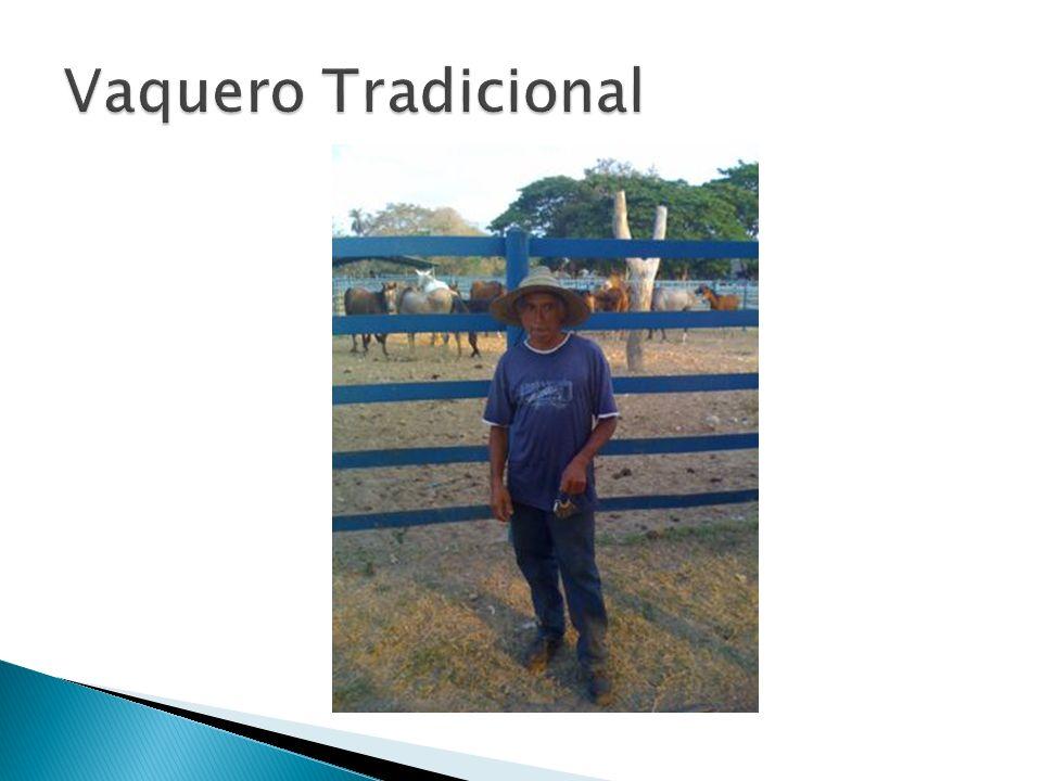 Vaquero Tradicional