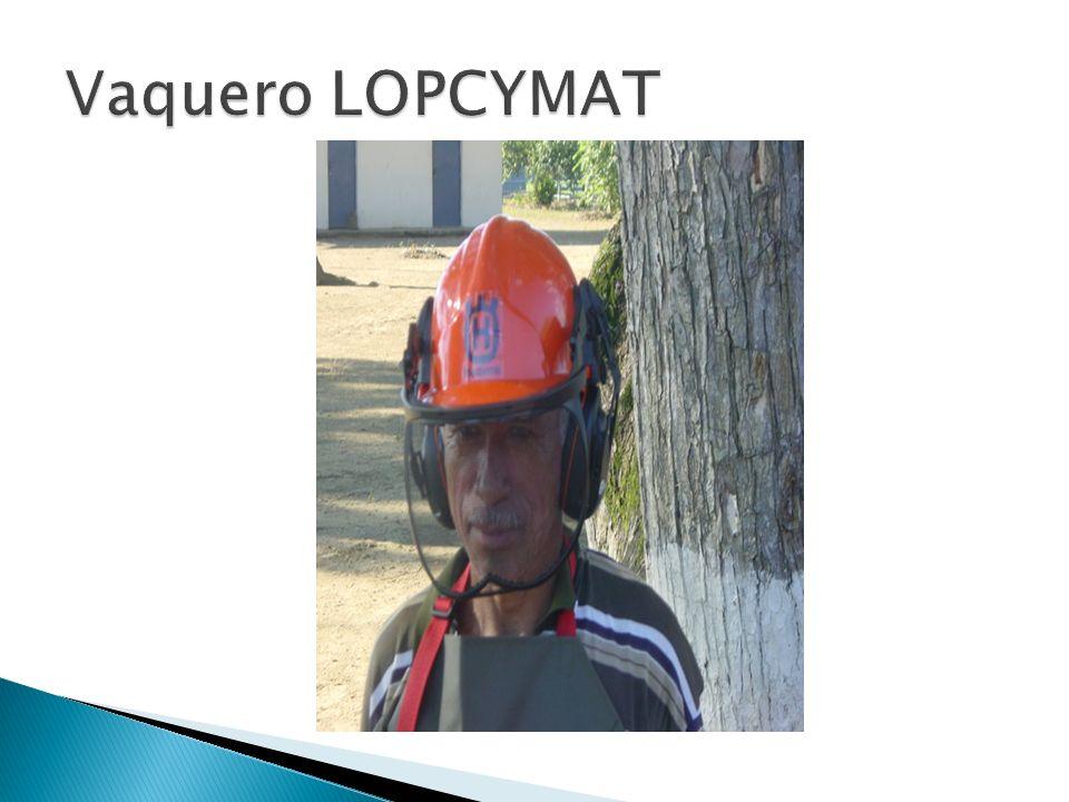 Vaquero LOPCYMAT