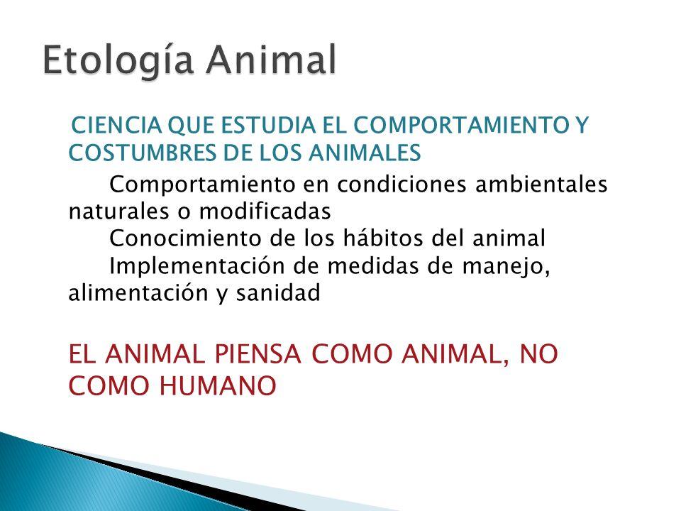 Etología Animal