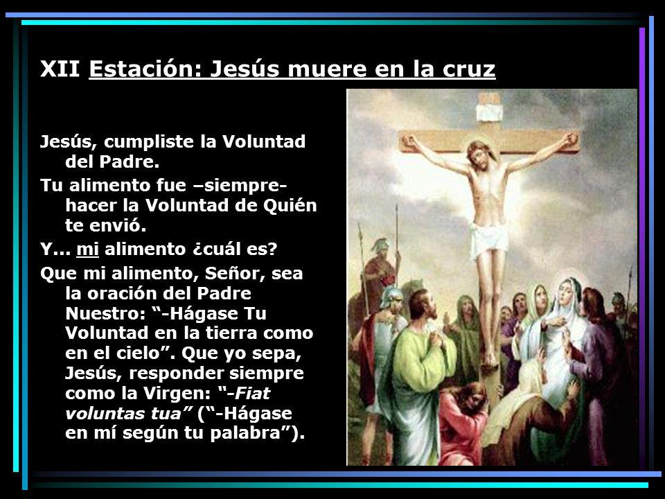 XII Estación: Jesús muere en la cruz