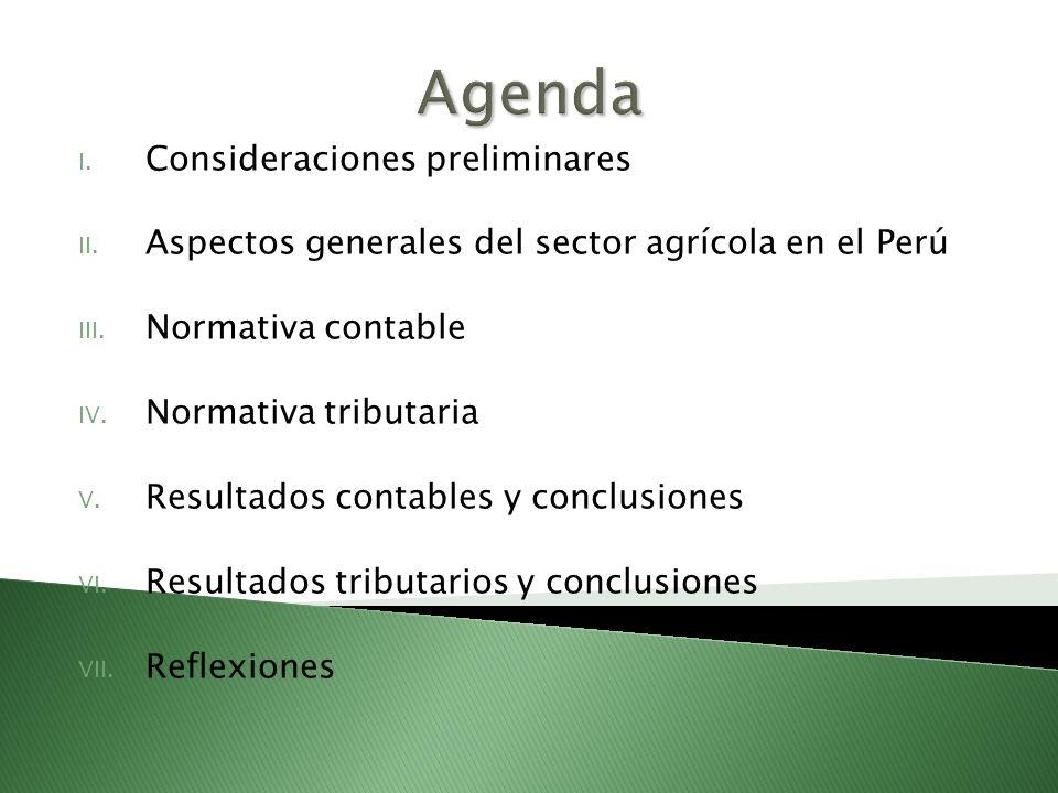 Agenda Consideraciones preliminares