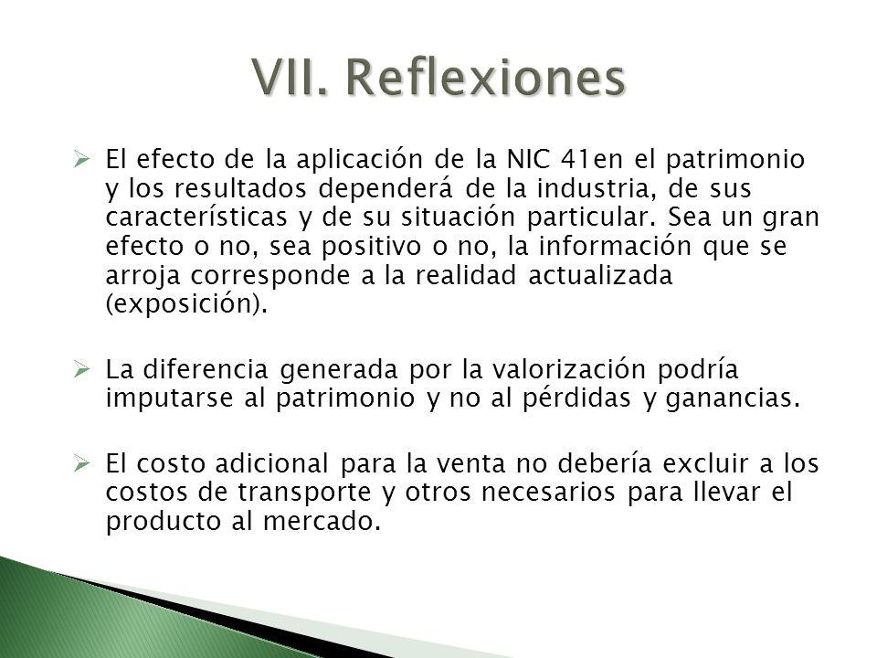 VII. Reflexiones