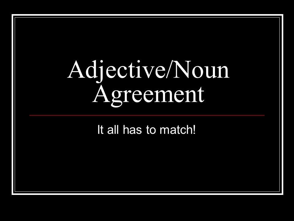 Adjective/Noun Agreement