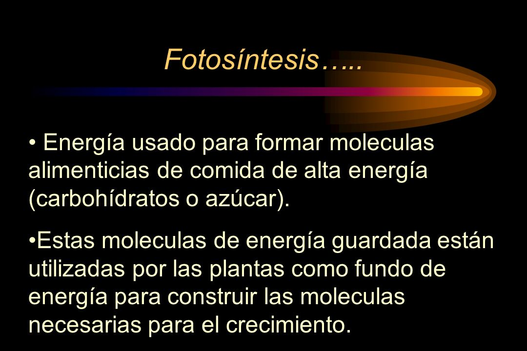 Fotosíntesis…..Energía usado para formar moleculas alimenticias de comida de alta energía (carbohídratos o azúcar).