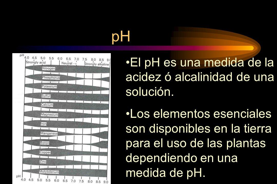 pH El pH es una medida de la acidez ó alcalinidad de una solución.