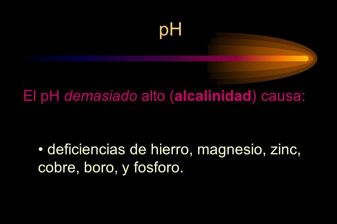 pH El pH demasiado alto (alcalinidad) causa: