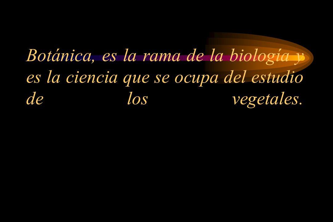 Botánica, es la rama de la biología y es la ciencia que se ocupa del estudio de los vegetales.