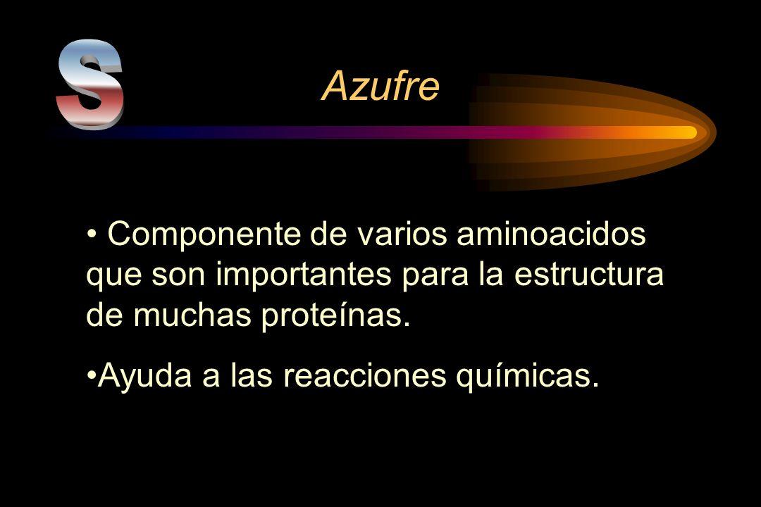Azufre S. Componente de varios aminoacidos que son importantes para la estructura de muchas proteínas.