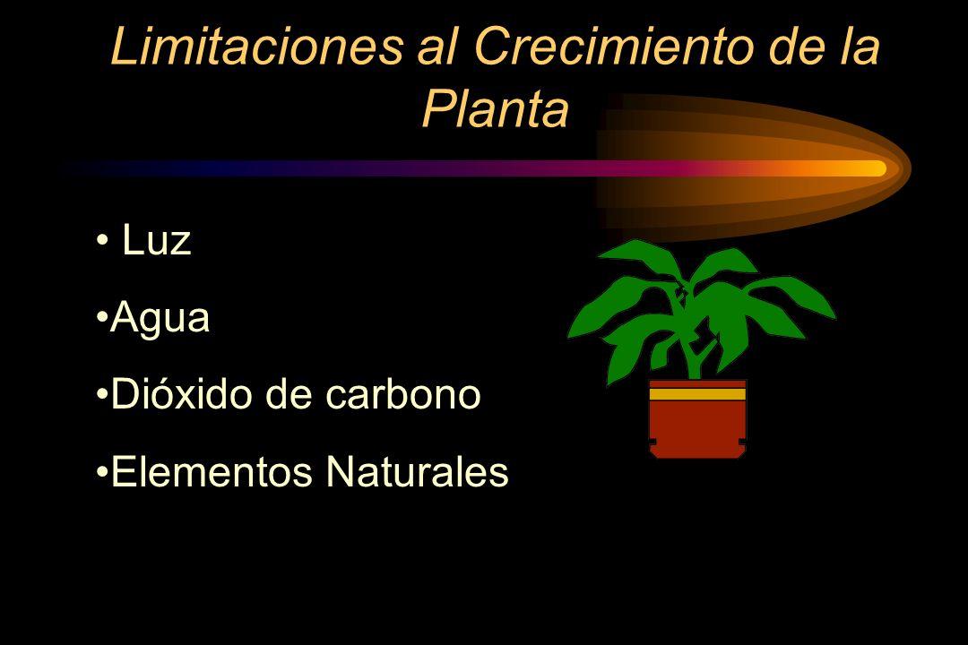 Limitaciones al Crecimiento de la Planta