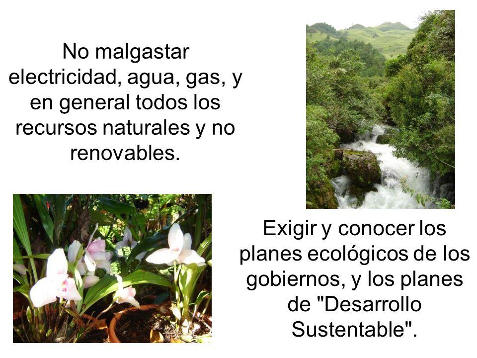 No malgastar electricidad, agua, gas, y en general todos los recursos naturales y no renovables.