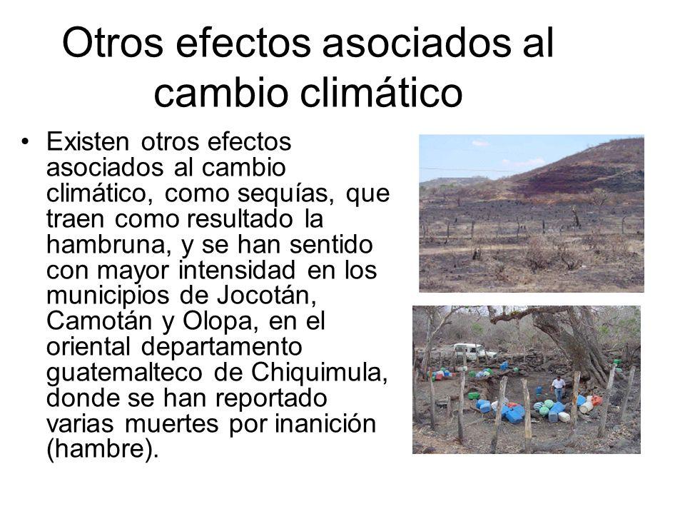 Otros efectos asociados al cambio climático