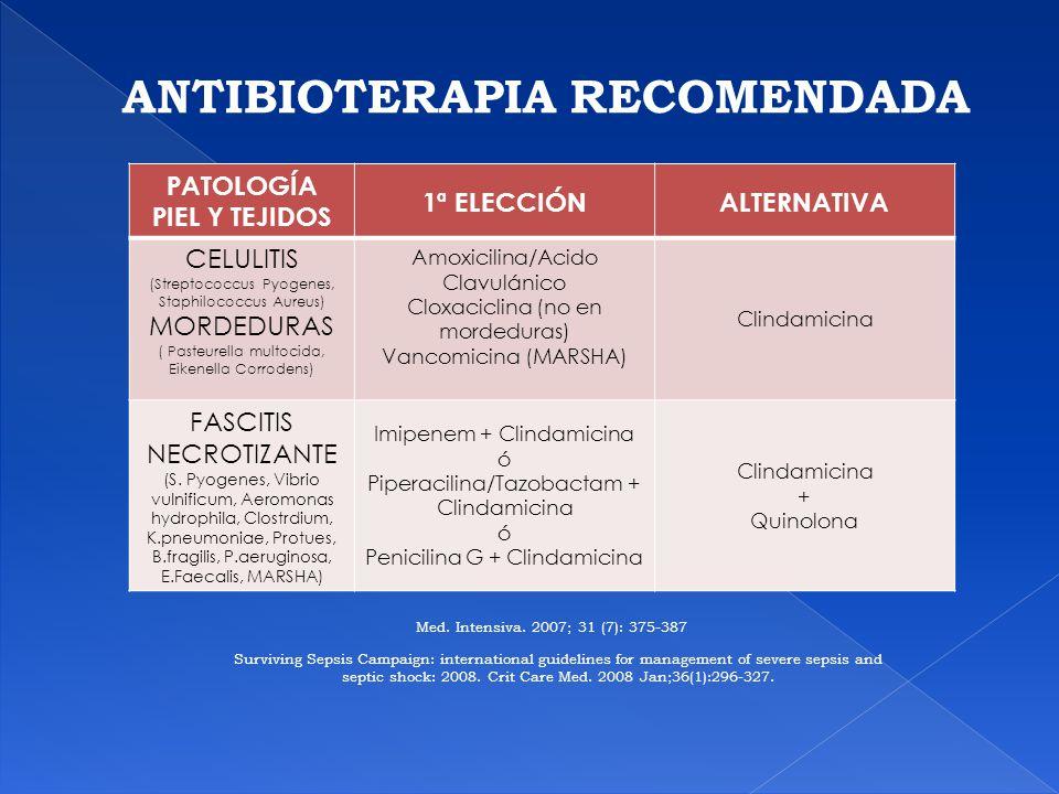 ANTIBIOTERAPIA RECOMENDADA PATOLOGÍA PIEL Y TEJIDOS