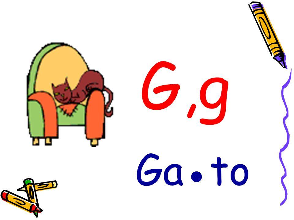 G,g Ga●to