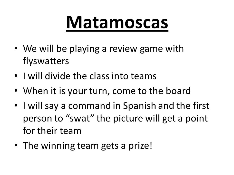 Matamoscas We will be playing a review game with flyswatters