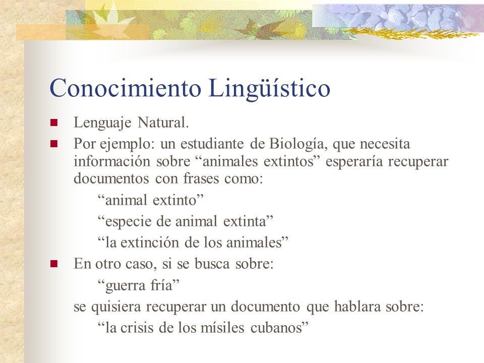 Conocimiento Lingüístico