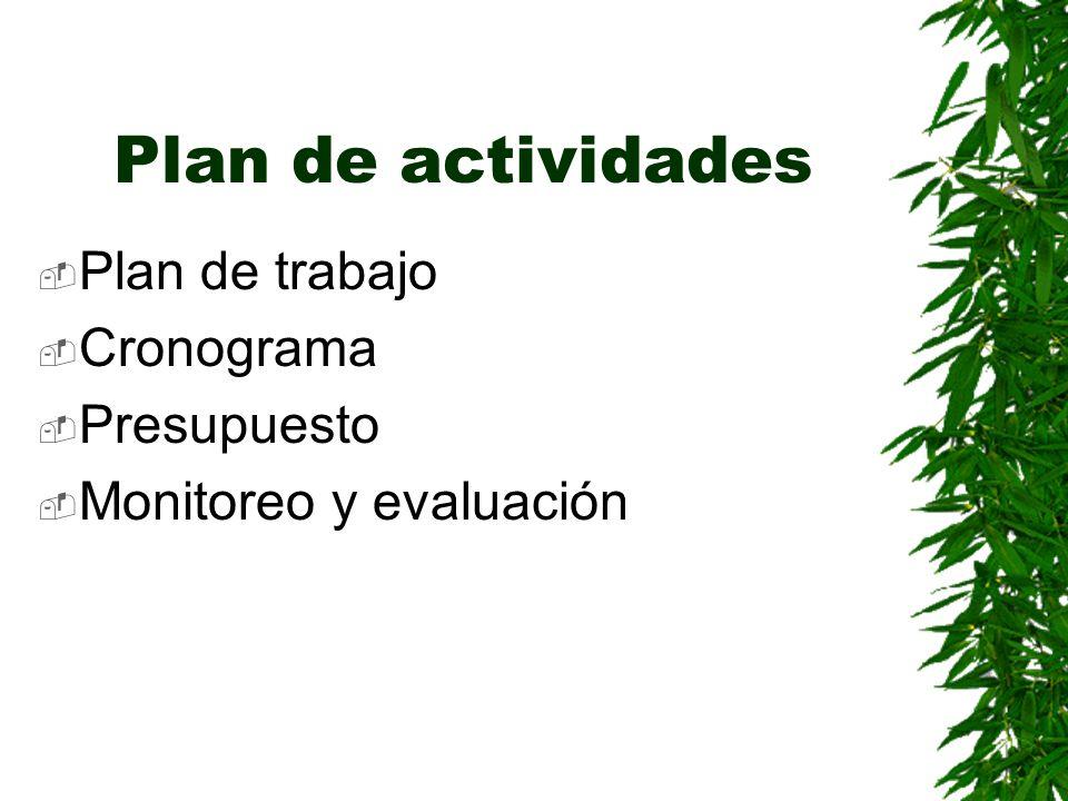 Plan de actividades Plan de trabajo Cronograma Presupuesto