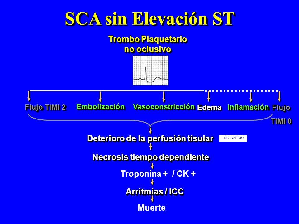 SCA sin Elevación ST Trombo Plaquetario no oclusivo