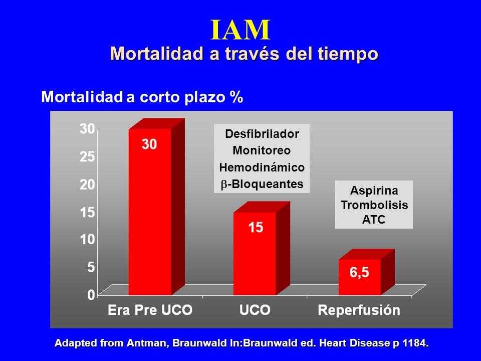 IAM Mortalidad a través del tiempo Mortalidad a corto plazo %