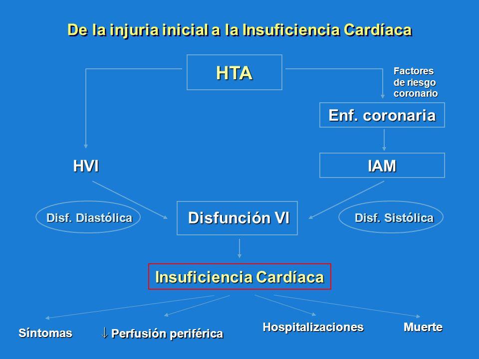 De la injuria inicial a la Insuficiencia Cardíaca