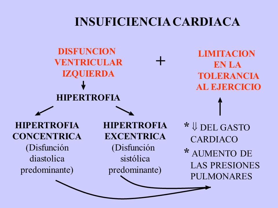 + INSUFICIENCIA CARDIACA *  DEL GASTO * AUMENTO DE DISFUNCION