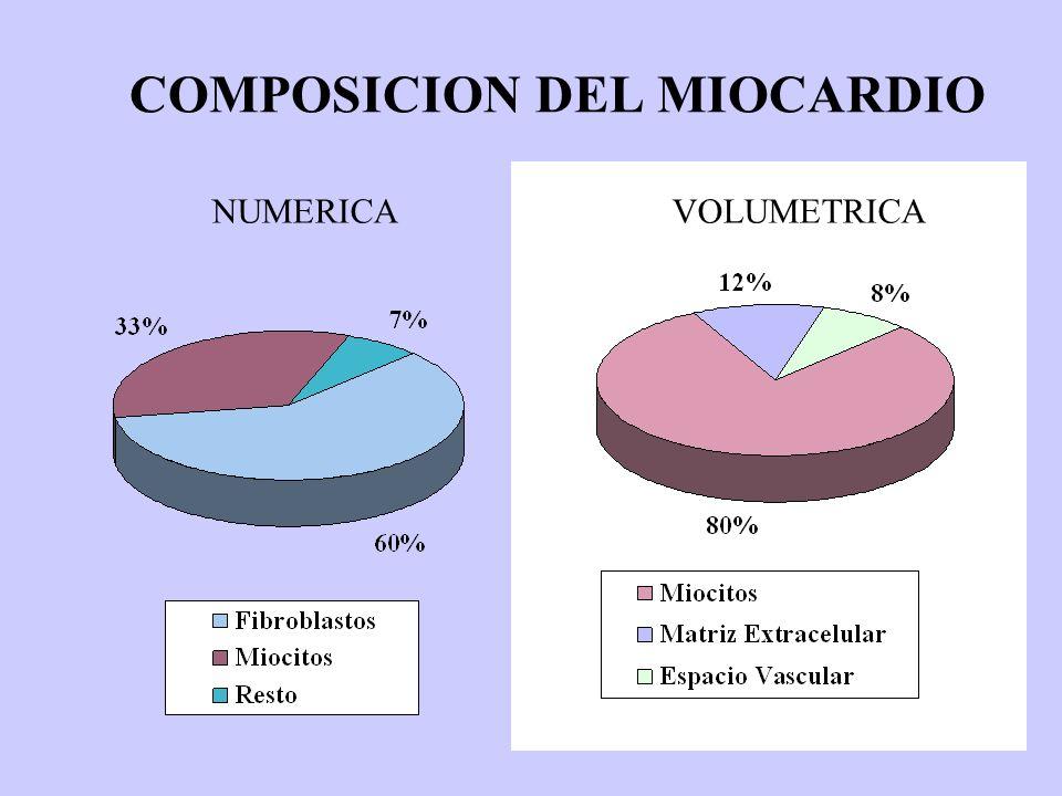 COMPOSICION DEL MIOCARDIO