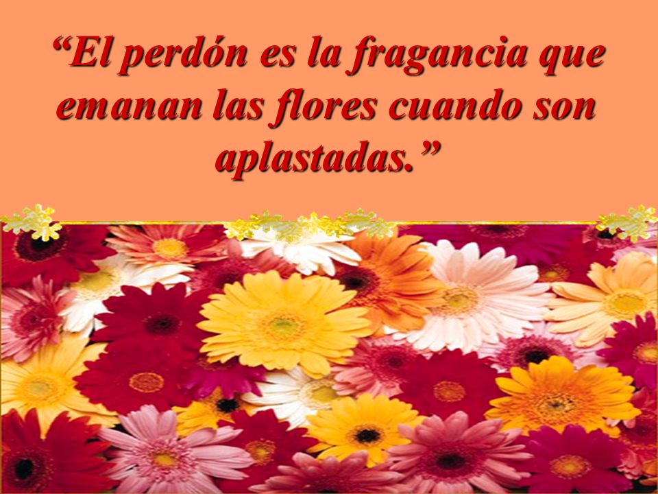 El perdón es la fragancia que emanan las flores cuando son aplastadas