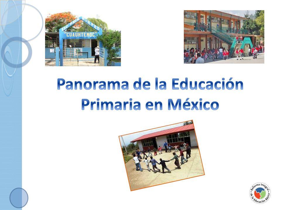 Panorama de la Educación Primaria en México