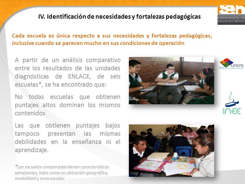 IV. Identificación de necesidades y fortalezas pedagógicas
