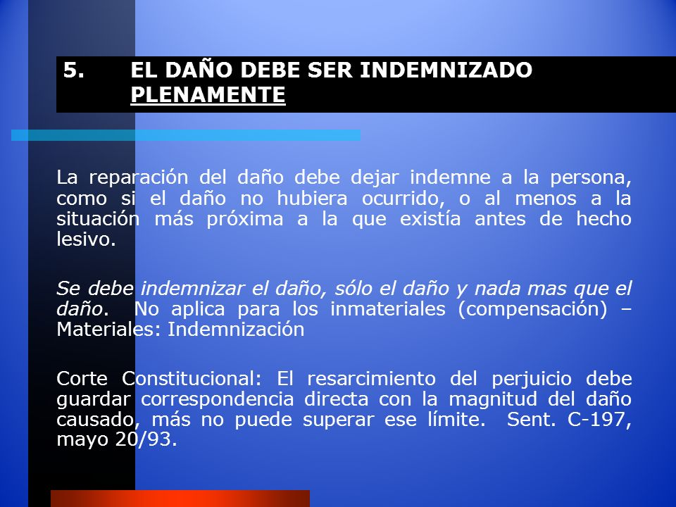 5. EL DAÑO DEBE SER INDEMNIZADO PLENAMENTE