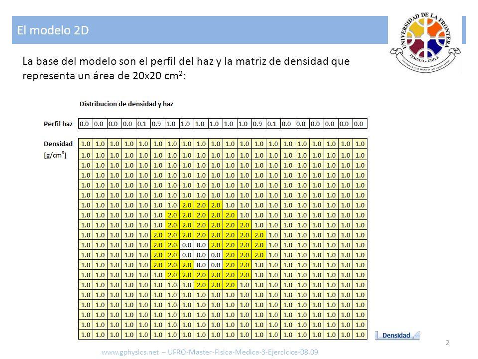 El modelo 2D La base del modelo son el perfil del haz y la matriz de densidad que representa un área de 20x20 cm2: