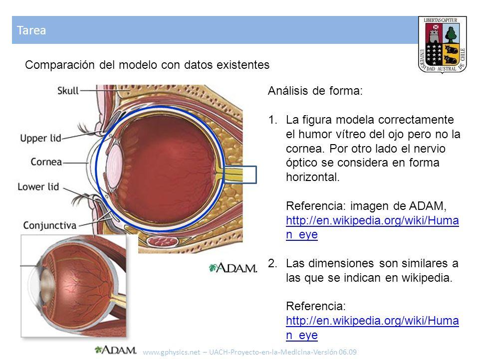 Tarea Comparación del modelo con datos existentes Análisis de forma: